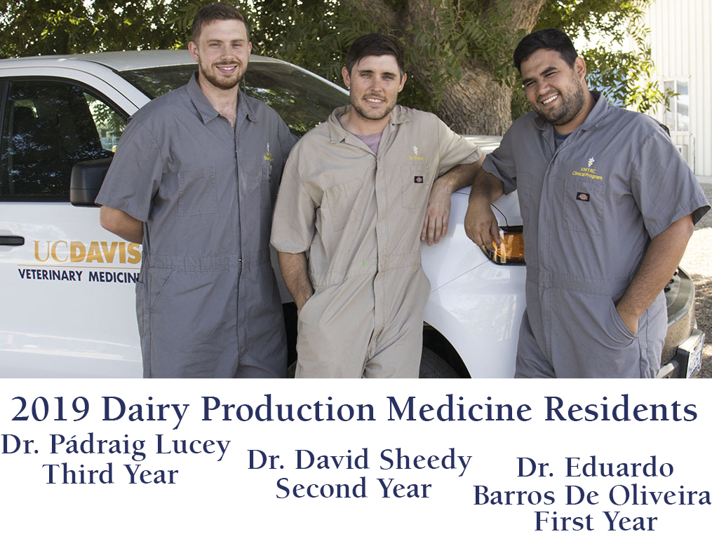 Photo: Residency in Dairy Production Medicine